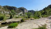 Languedoc-Roussillon - Gardon - Collias